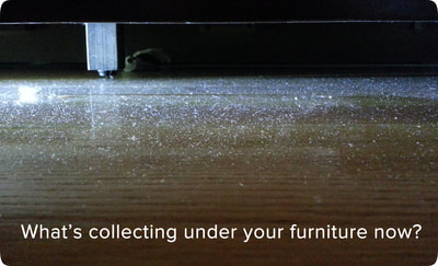 Photo of dust under furniture before Mini-Mole